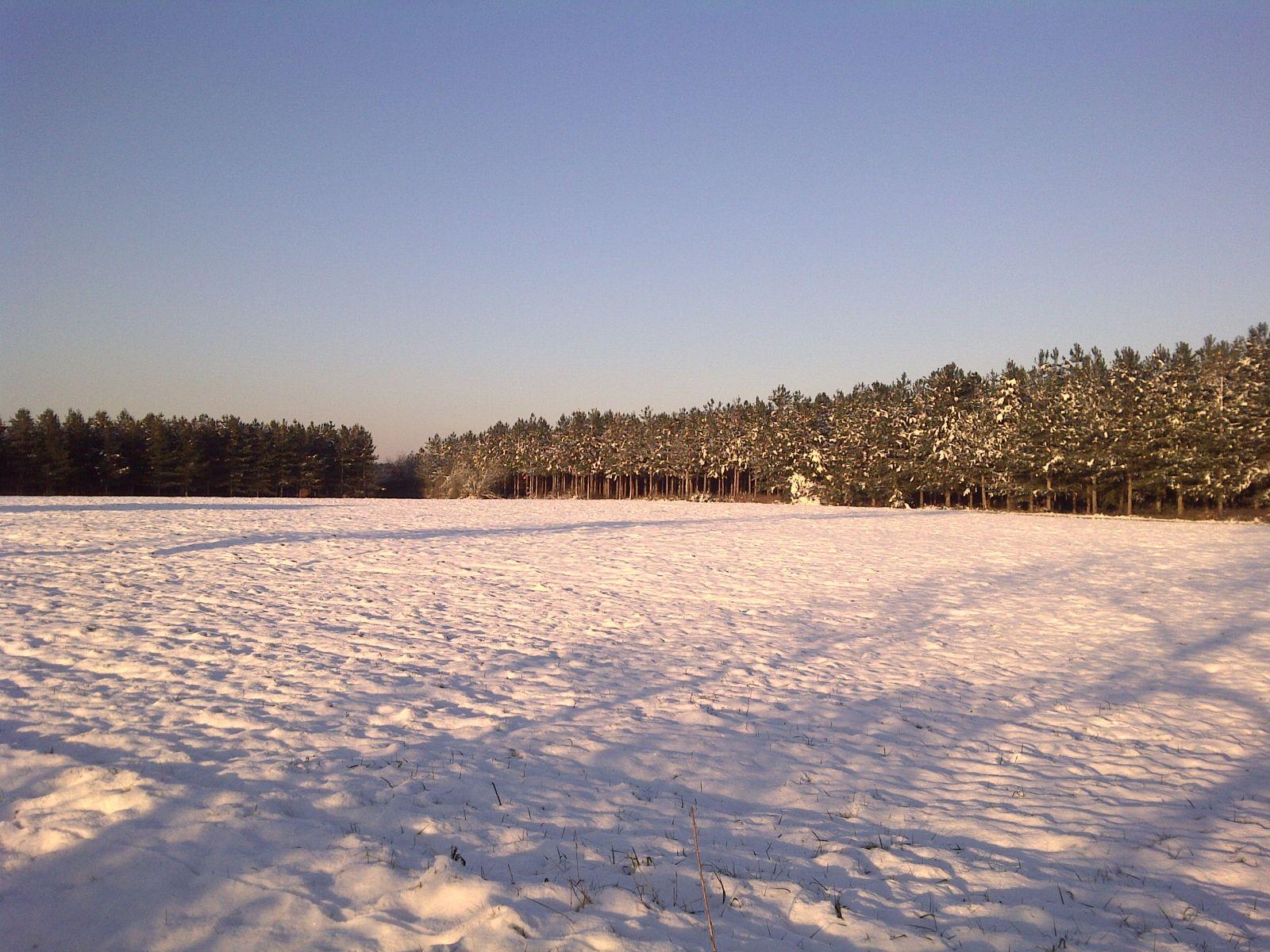Traiter Le Bois Naturellement u2013 Myqto com # Traiter Le Bois Naturellement